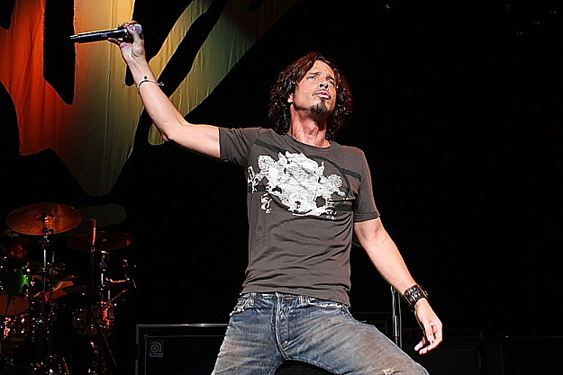the gallery for gt chris cornell 1993