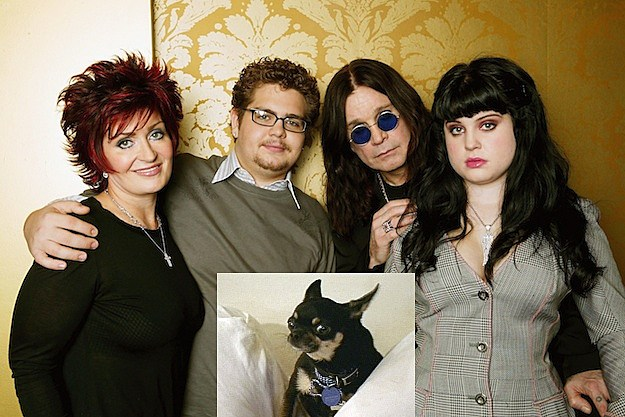 The Osbournes / Martin