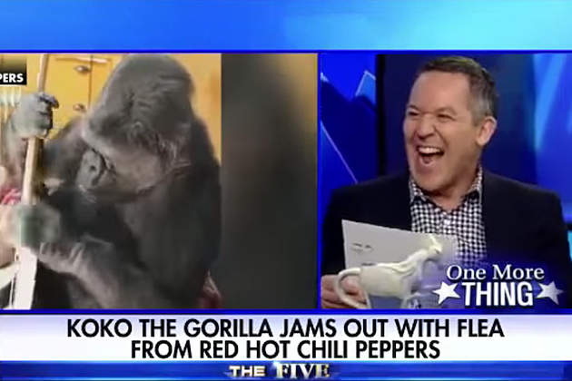 Red Hot Chili Peppers Called 'Worst Band on the Planet' by Fox News Host