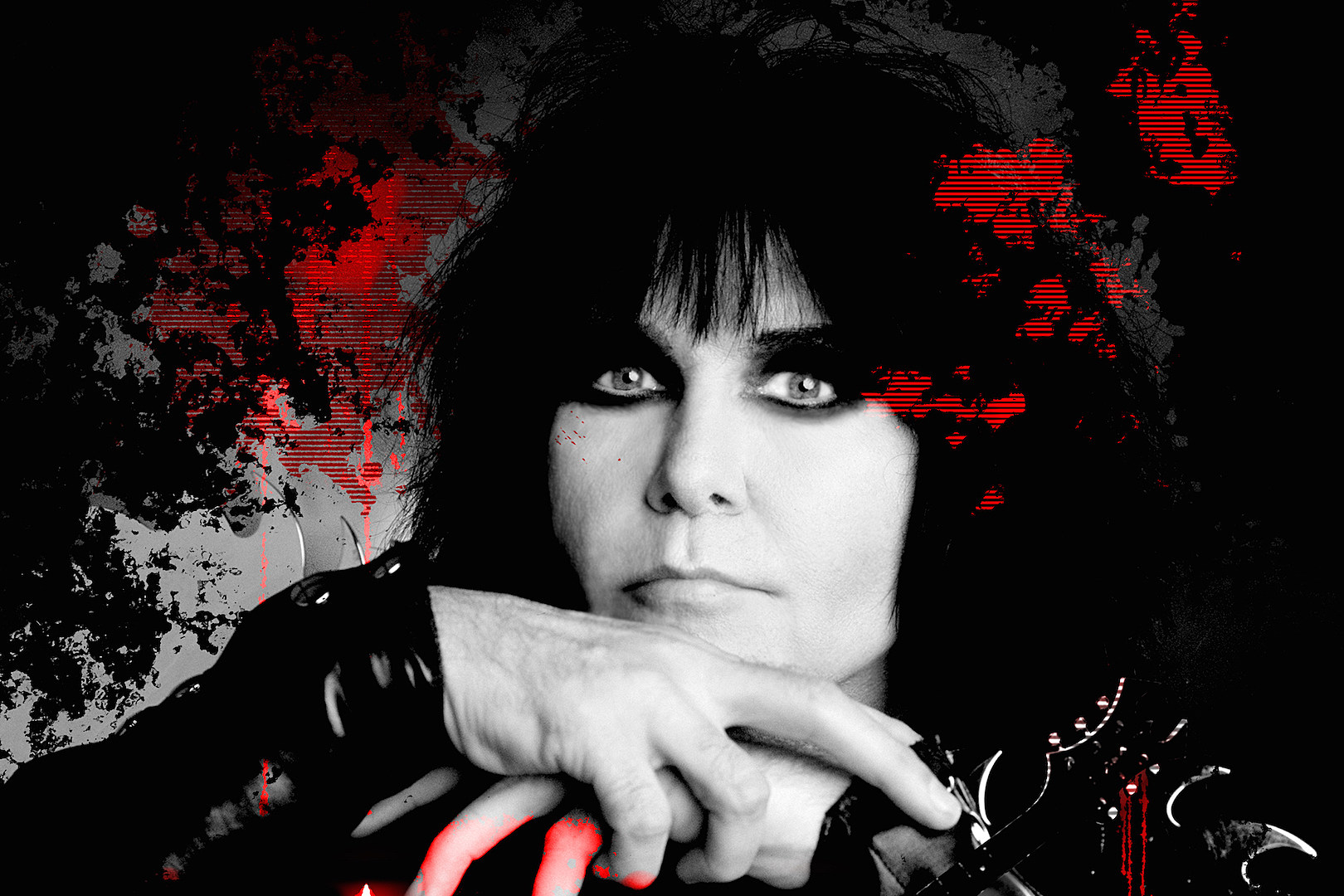 blackie lawless 2016