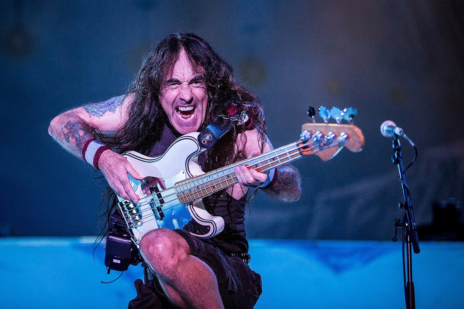 Steve Harris (Iron Maiden, British Lion): Why I Decided to Play Bass