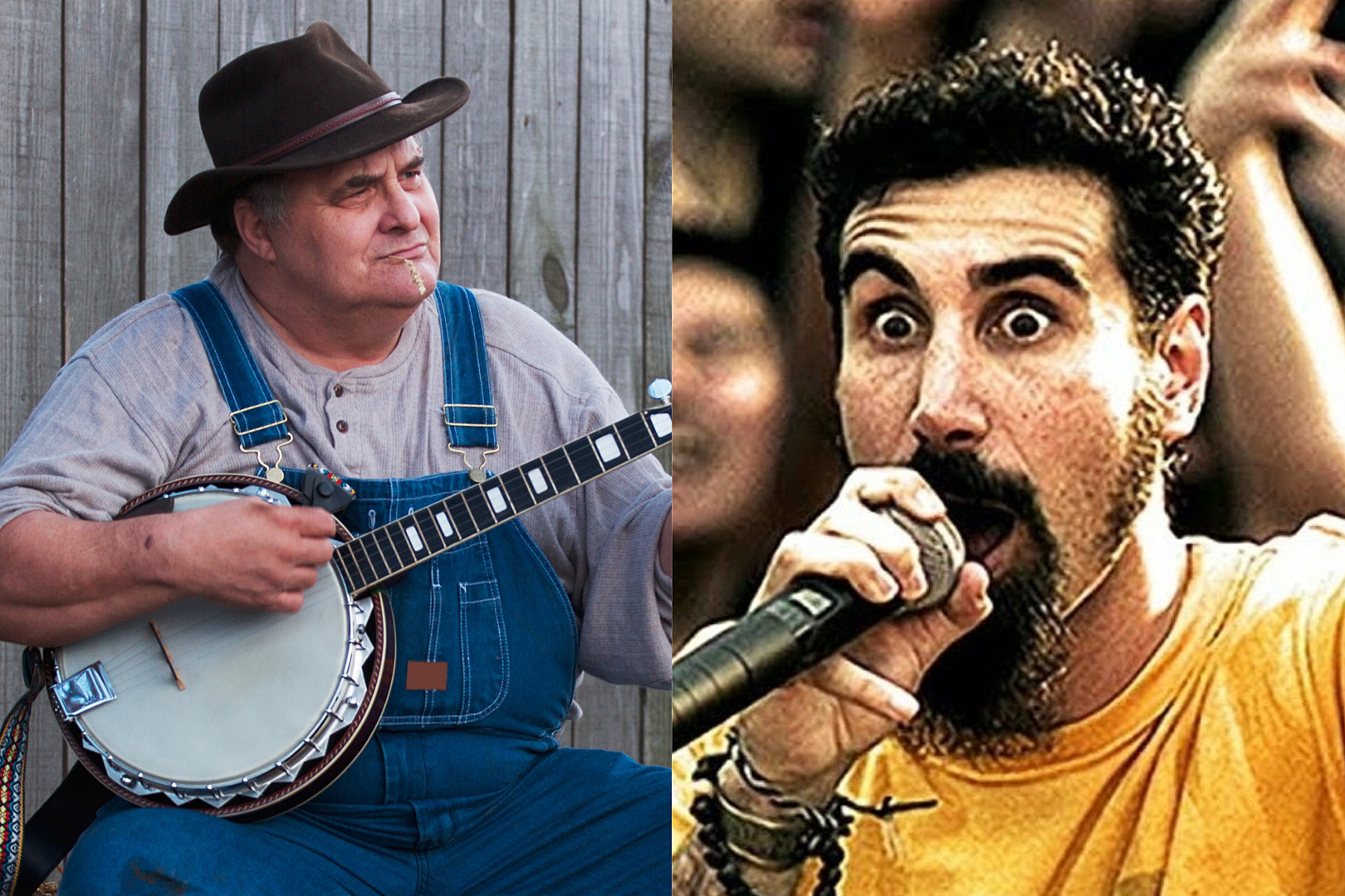 Pictured: A bluegrass banjo player (L) and System of a Down vocalist Serj Tankian from the 'Chop Suey!' music video.